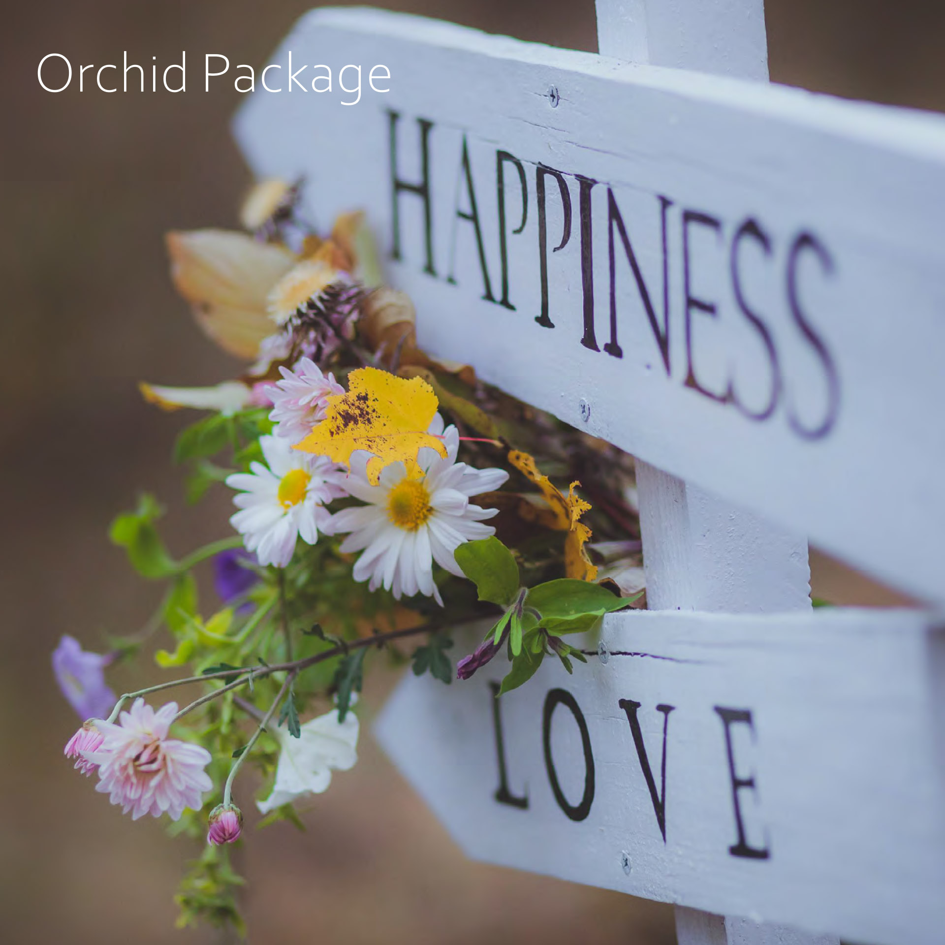 Orchid Wedding Package at the Charlecote Pheasant Hotel